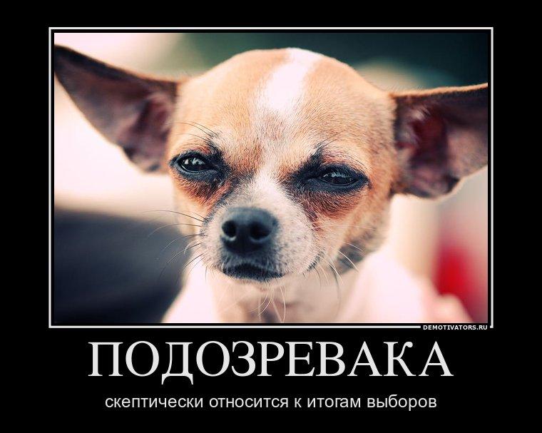 http://mainfun.ru/Images2/alesambr/ovib/vybory_2011_05.jpg