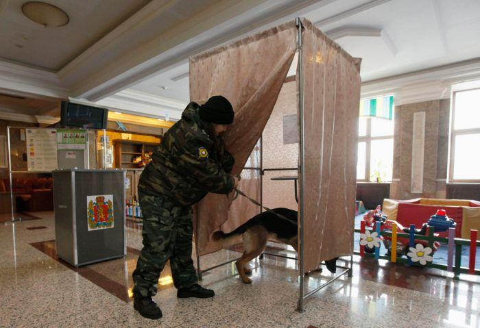 russia_election_14 Выборы в России глазами иностранцев (28 фото)