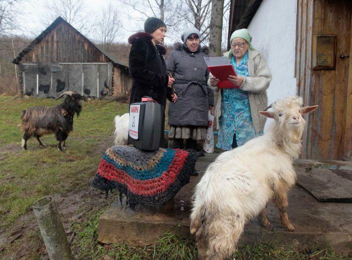 russia_election_23 Выборы в России глазами иностранцев (28 фото)
