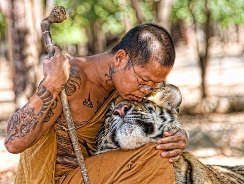 Очень трогательные фотографии (25 фото)