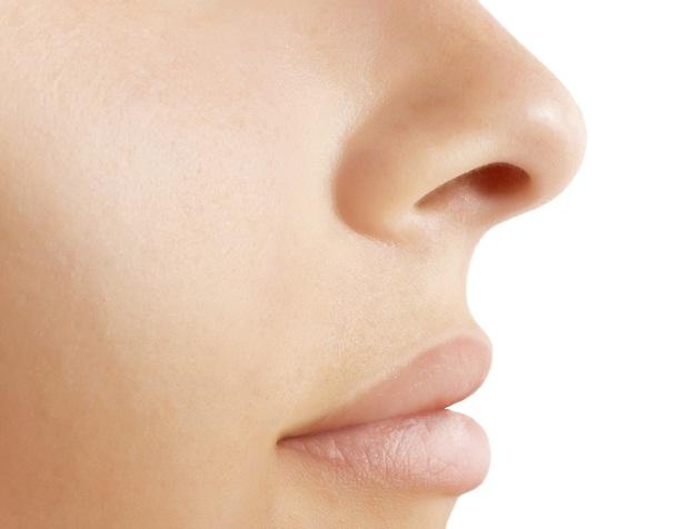 Блоги. Зачем у носа две ноздри. позновательно, нос, органы человека,
