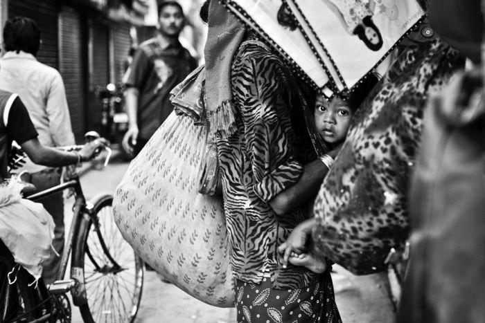 Блоги. Фотографии от National Geographic (36 фото). фотографии, подборка, National Geographic