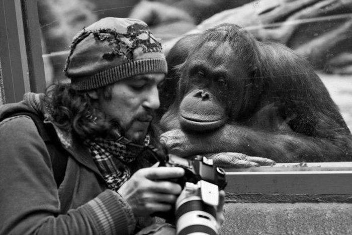 Las fotografías evocan emociones