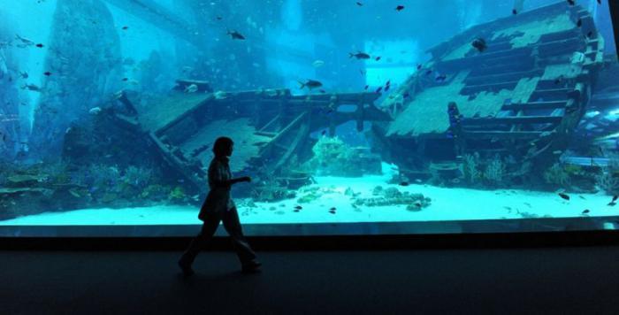 Открытие самого большого в мире океанариума