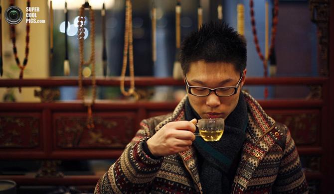 Tregothnan – английский чай, экспортируемый в Индию и Китай (20 фото)