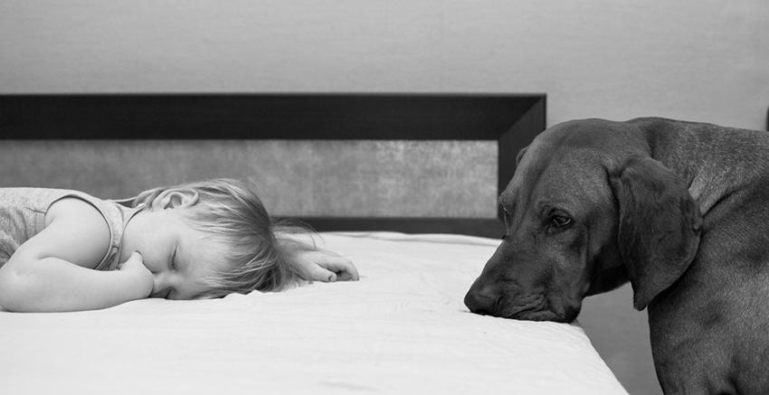 Реальность снов: 10 удивительных фактов о сновидениях