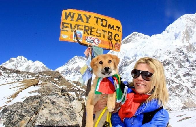 Пес Рупи взошел на Эверест