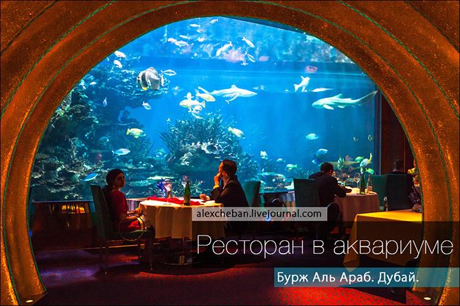 Подводный ресторан под