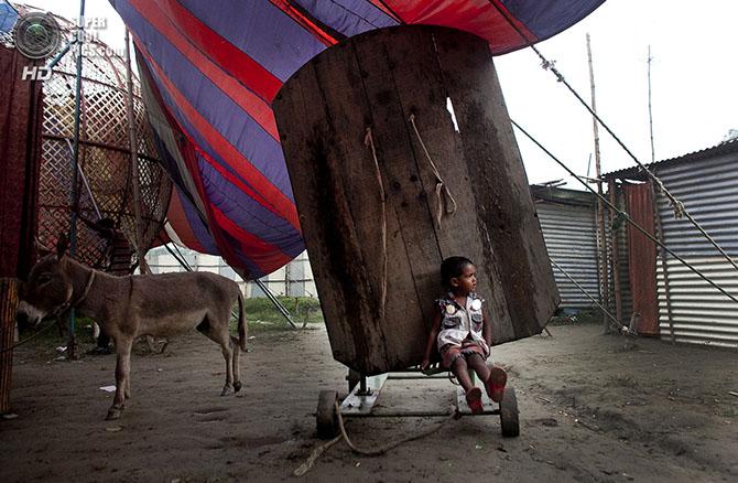 Жизнь в бангладешском цирке