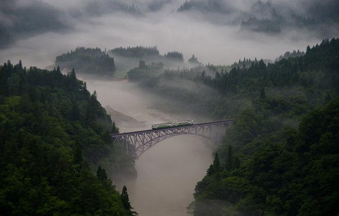 Лучшее с конкурса фотографии National Geographic 2013
