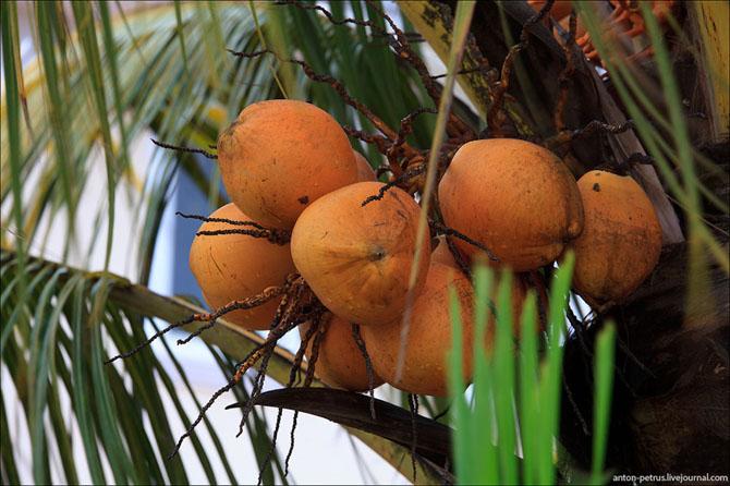 Маврикий – осколок рая