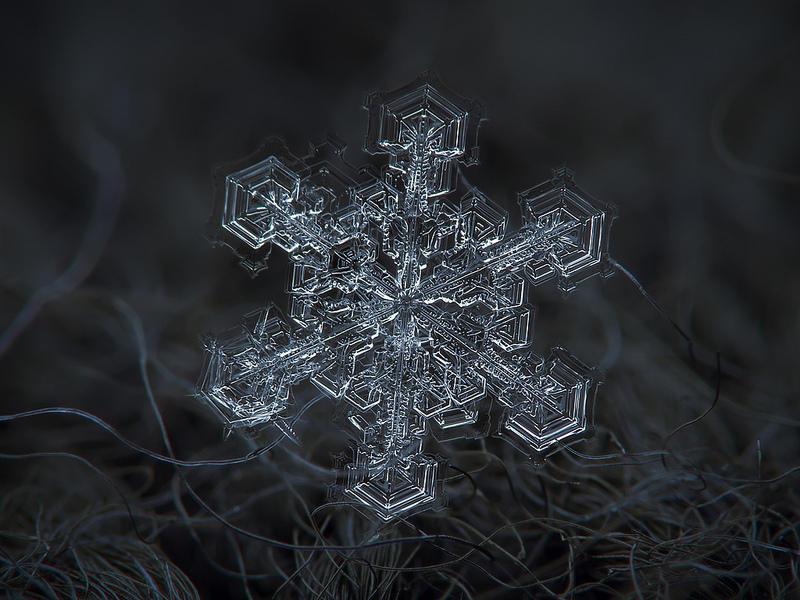 Удивительные и неповторимые снежинки крупным планом (10 фото)