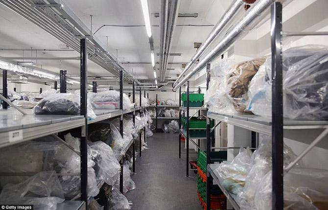 Богатство и разнообразие конфискованной контрабанды в аэропорту Лондона