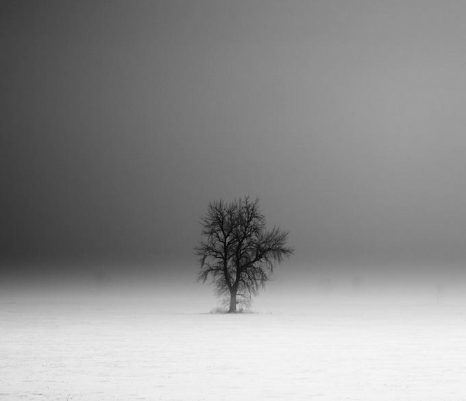 Туманные пейзажи Derek Toye