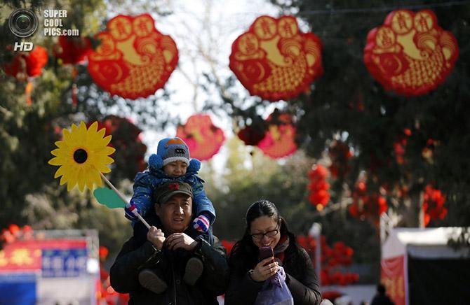 Краски Китайского Нового года