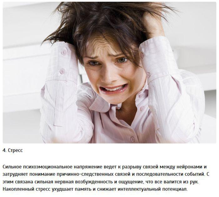 Вещи отрицательно влияют на мозг