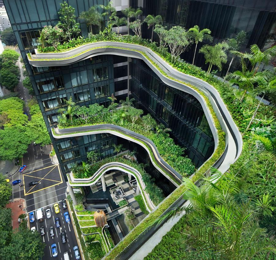 В этом отеле Сингапура самые крутые высотные сады