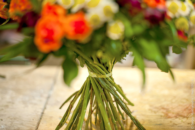 12 правил выбора цветов и секретный способ сохранить их надолго