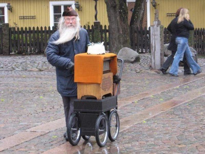 Как живут иммигранты в Швеции (33 фото)