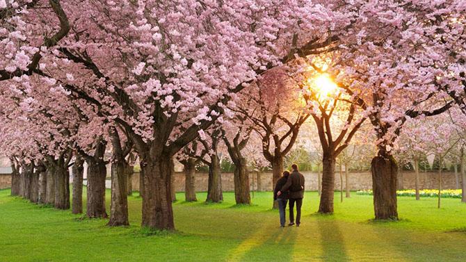 20 причин, почему мы так ждем весну