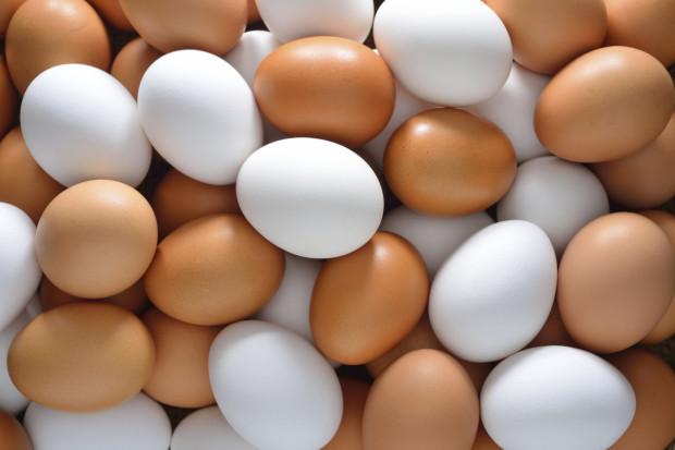 Разница между белыми и коричневыми куриными яйцами