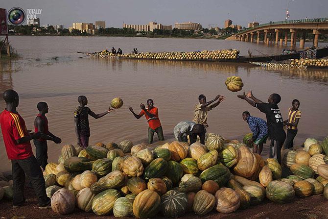 Жизнь в Нигере