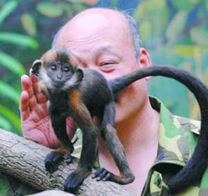 Китайский смотритель зоопарка в течение целого часа лизал анус обезьяны, чтобы помочь ей испражниться