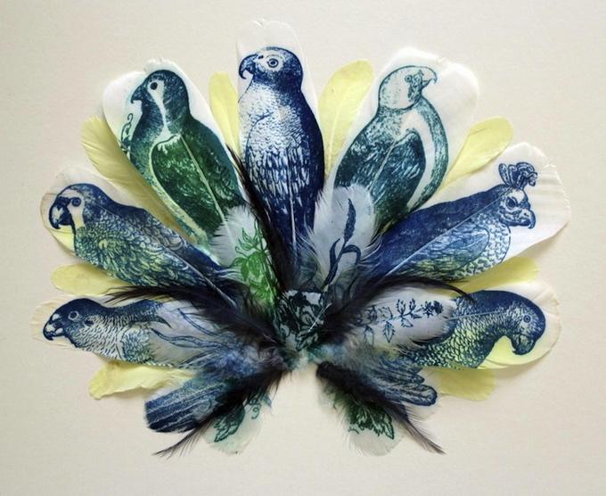 Рисунки на перьях Rebecca Jewell