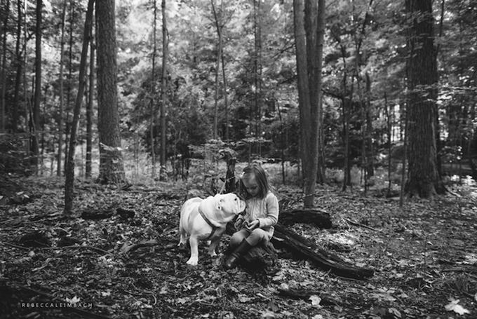 Дружба девочки и бульдога