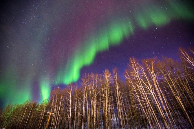 Охота за Северным сиянием в Фэрбенкс на Аляске