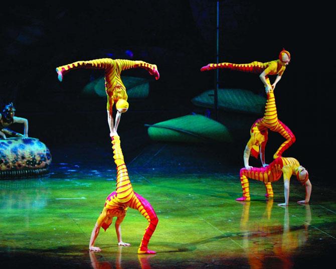 Фееричные цирки мира