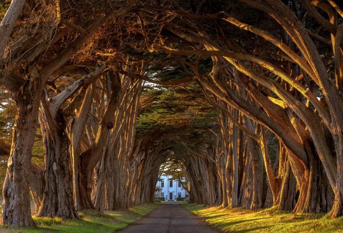 Самые красивые тоннели в мире