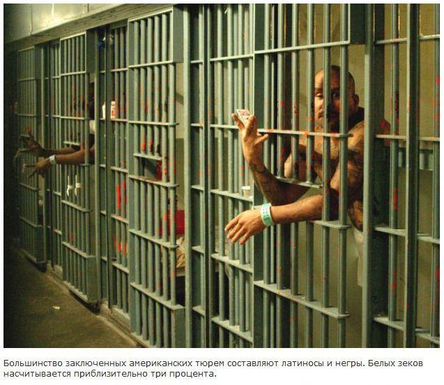 Тюремный бизнес в США (8 фото)