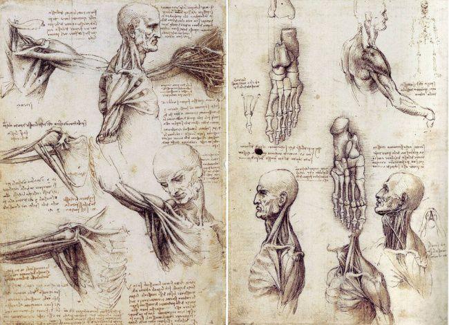 Гениальные изобретения и загадки Леонардо да Винчи