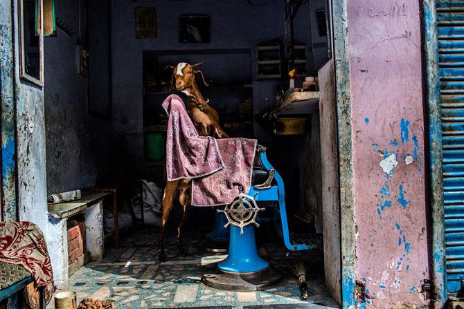 Мастер-класс от известного австралийского фотографа