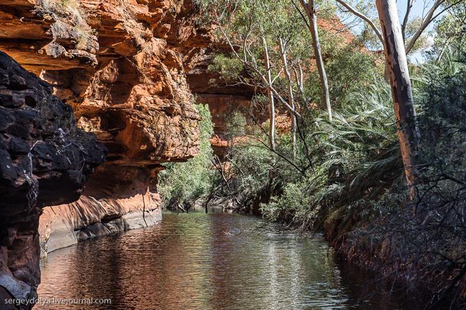 Прогулка по Королевскому каньону в Австралии