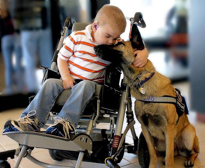 Самые трогательные фотографии