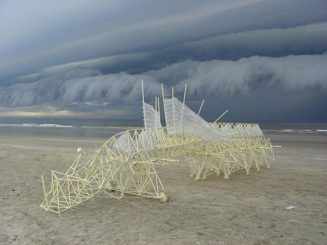 Strandbeests Тео Янсена (4 фото + видео)
