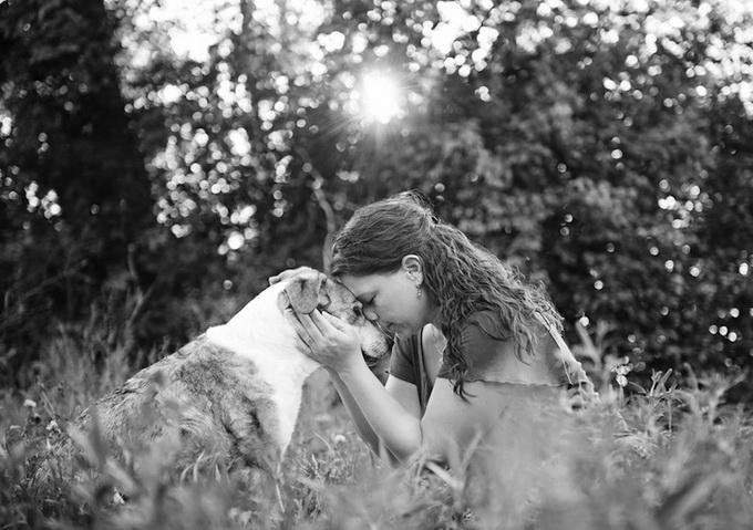 Собаки Sarah Beth (19 фото)