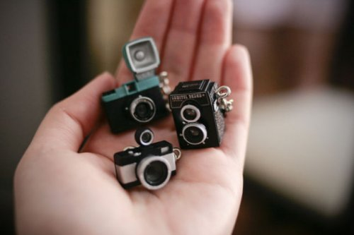 Жизнь в миниатюре гораздо привлекательнее