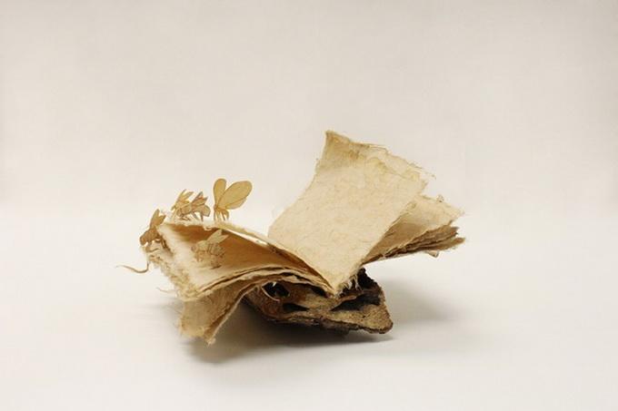 Книга из пня Pochiko Ho