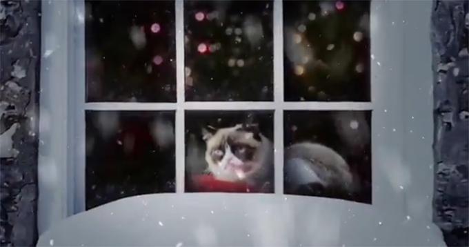 Коты-звезды Youtube поздравляют человечество