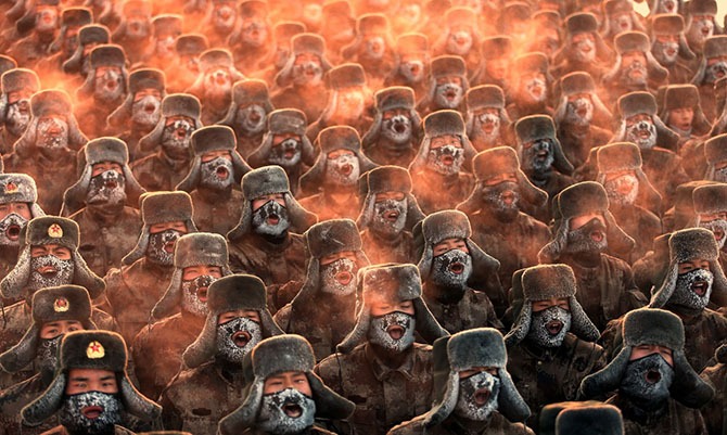 Лучшие снимки 2013 по версии Getty Images