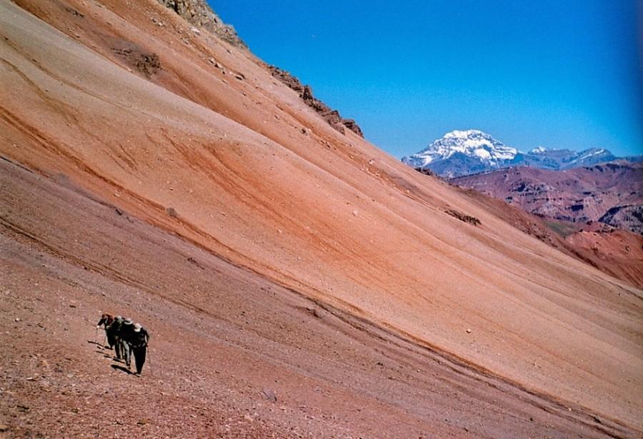 9 навыков, которые можно получить только в Аргентине