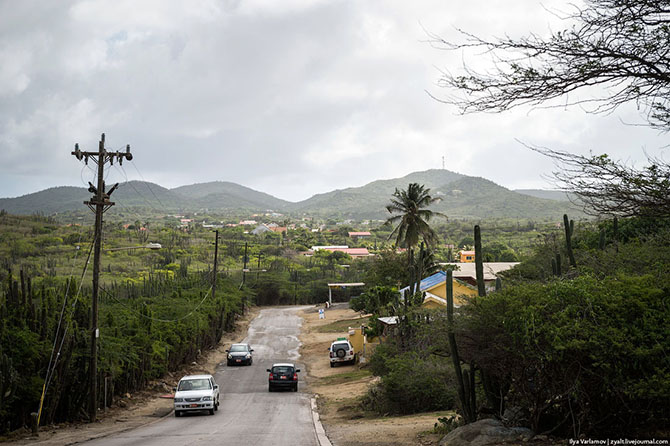 Путешествие на острова ABC - Аруба, Банейро и Кюрасао