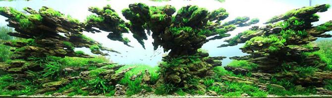 Гении оформления аквариумов