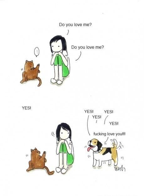 Кот vs Собака