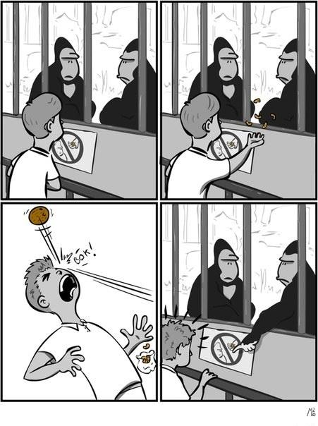 Не кормить
