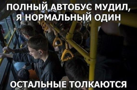 Утром в автобусе
