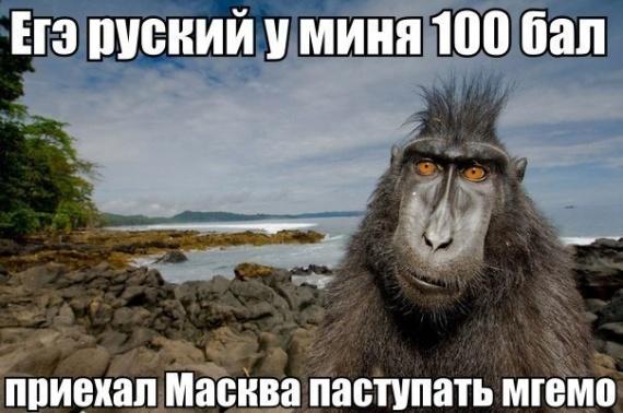 Приехать в Маскву паступать русский 100 бал!